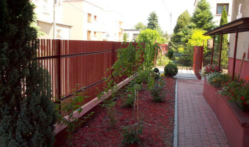ObrazPle-czerwiec-2011-037